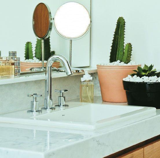 plantas para banheiro